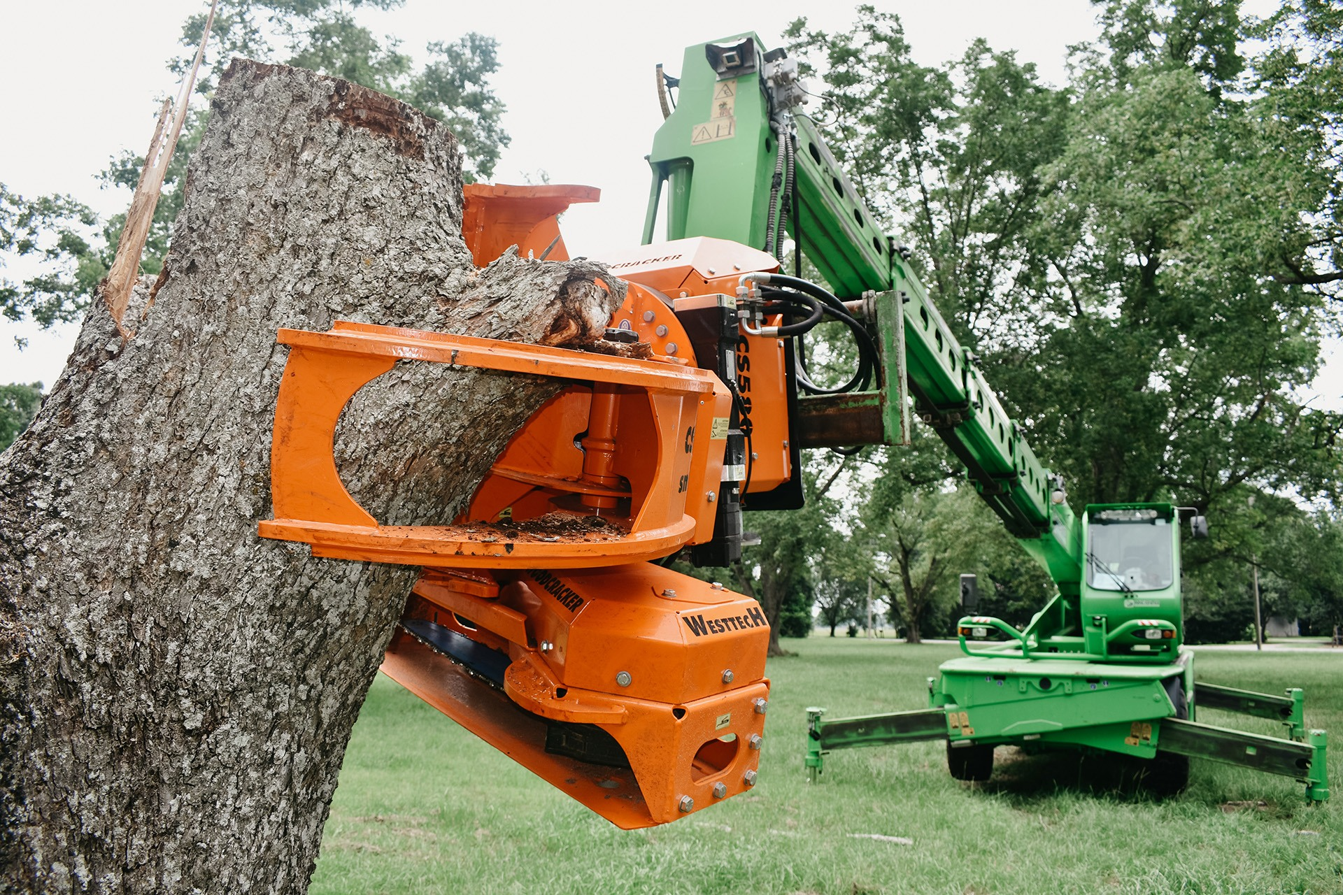 Big Green Tree Machine Tree Removal Tree Trimming Stump Grinding Emergency Services